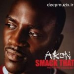 Smack That - AKON ft EMINEM
